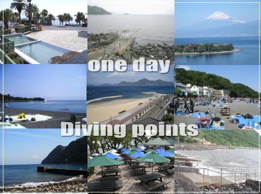 伊豆、神奈川、千葉の有名ダイビングポイントが格安で潜れる