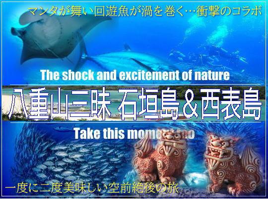 西表遠征予定!石垣島8ボートレンタル食事付